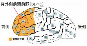 DLPFC